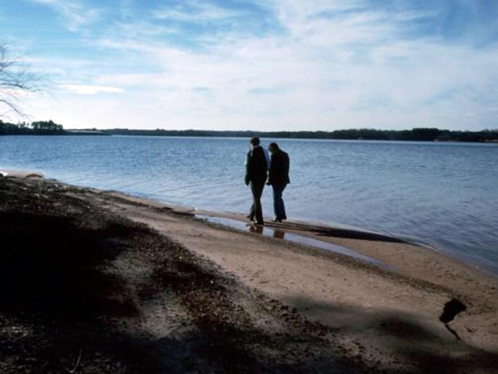Lake News November Rain